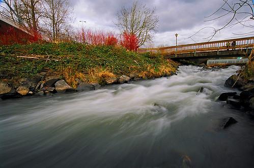 Rushing Water - Alton Baker Park, Eugene Oregon