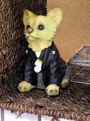 Chihuahua figurine, in Japanese formal wear #524