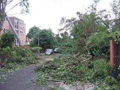 Tornado 019 (Mangrenade) Tags: tornado birmingham moseley sparkbrook july 2005 wind damage