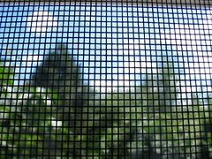 Looking Through a Screen