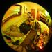 1214_fish-livingroom-perk02
