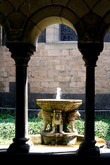 fountain (Blackwings) Tags: fountain font spring well architecture historical germany monastry water lion collonade shadow light marialaach