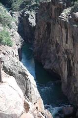 Animas River Canyon (dhw25) Tags: durangosilverton steamtrain durango dsng railroad animasriver