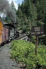 Crossing the Animas (dhw25) Tags: durangosilverton steamtrain durango dsng railroad animasriver