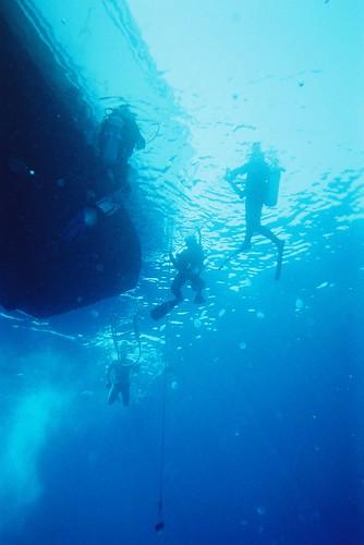 Plongée en contre plongée
