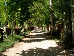 Sartakht Village, 2004