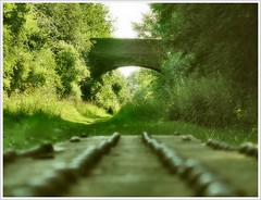 . The Old Railway . (3amfromkyoto) Tags: morning bridge trees suffolk clare sunday railway disused 3amfromkyoto flickr:user=3amfromkyoto