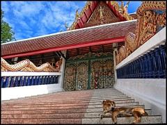 Temple Dog, Hua Hin, Thailand (shadowplay) Tags: dog thailand temple dragon sleep decoration buddhism hua hin buddhisttemple sorryevaluation colorriot intricateness
