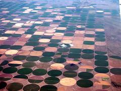 Pizza Farms in Colorado (Bill in DC) Tags: above wow colorado 2000 flight co flights nikoncoolpix990