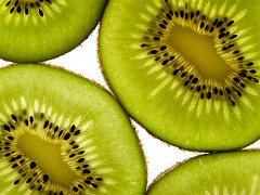 Kiwi (Rune T) Tags: green closeup fruit wow topf50 bravo 500plus quality 100v10f topv777 kiwi backlighted p1f1