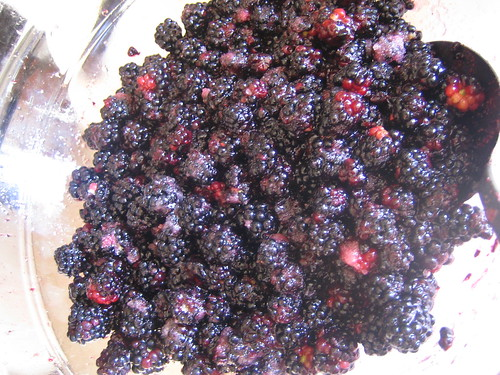 Blackberries and sugar
