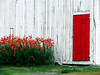 Pastoral* (Imapix) Tags: voyage travel flowers canada art nature topv111 barn canon photography photo interestingness topf75 bravo foto photographie image quebec topv1111 100v10f québec topf150 imapix yourfavpix favpix topfavpix gaëtangbourque gaëtanbourque copyright©2006gaëtanbourqueallrightsreserved 123hallofame gaetanbourque pix50 pix100 pix200 imapixphotography gaëtanbourquephotography