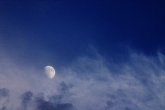 真昼の月 sign of the moon