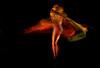 Cia Sera Q. (jcfilizola) Tags: jumper movimento dança artes seraque nikonstunninggallery ptbr99