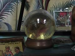 (Llama Love) Tags: crystal crystalball americantattoo