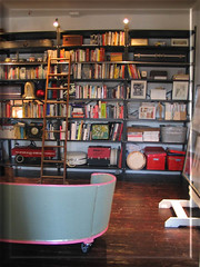 the Parsimonious Librarian's Liar. (eyewashdesign: A. Golden) Tags: nyc pink green nerd loft trash interiors you recycled library wheels books couch sofa roll ladder shelving recycle trashy rolling hardwood easel organisation artstudio alanegolden archiitecture eyewashdesign trashnyc nycloft rollingladder