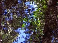 pebbled water (fotogail) Tags: show blue light abstract reflection green water creek forest wow reflections stream sierra retreat salon ripples popular puc fotogail saloncom lovecreek top2005 oxyprint sfchronicle96hours your300pre2006favesthanks printforpucshow artonthewallsatthecaliforniapuc ilobsterit