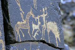 Prehistoric Erotica (MykReeve) Tags: mongolia gobidesert gobi desert petroglyphs bichigtkhad bayanmountainrange horse penis man goat