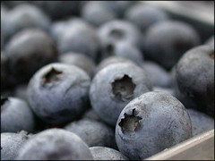 Blueberries (tschopper (Tom Schopper Photography)) Tags: nyc macro farmersmarket rockefellerplaza utatafeature utatacollection