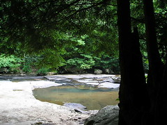 Laurel Creek - by Buttersweet - PLEASE REMEMBER OUR FRIENDS IN CHILE