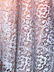 lace (codfisch) Tags: grandmashouse 805dendritestour oaklandca dendrites