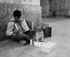 The Accordionist (State Of Mind) Tags: 2005 bw dog portugal lisbon forsakenpeople accordion waitingforgodot dystopia literaryreference tccomp043
