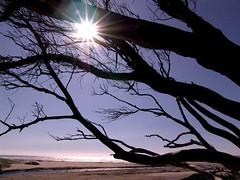 Sun & Sand (AL Nuaimi) Tags: al nuaimi dxb dubai uae sun romance