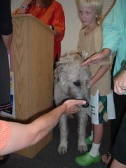 Pam Houston's Dog (Queen of Planning) Tags: pamhouston onebookonetown gordoncooperbranchlibrary garfieldcountypubliclibrarysystem carbondalecolorado