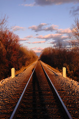 Long Shadow on the Tracks. (BamaWester) Tags: trees shadow sky clouds outside outdoors vanishingpoint 500v20f inho tracks rails 500views weeklysurvivor railroadtracks top20rrpix