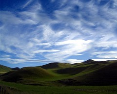 waikato hills (EssjayNZ) Tags: newzealand green tag3 taggedout 1025fav 510fav tag1 sheep farm lovely1 2006 hills waikato essjaynz putaruru 50v5f interestingness80 taken2006 i500 tga2 sarahmacmillan