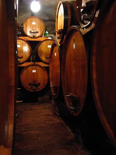 Barrels at Cantine Contucci