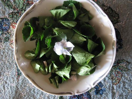 Violet Salad
