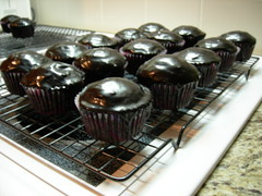 Cream-Cheese Stuffed Chocolate Cupcakes - iced and ready to eat!