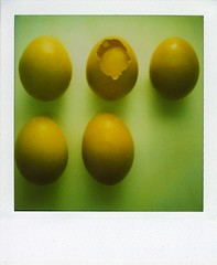 Five eggs (LeonL) Tags: brown polaroid sx70 flickr five egg 24hrs hipbotunsquare aplusphoto 20070505 700type