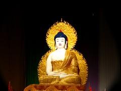Shining Example of Love and Peace (HoleePhotos) Tags: day fireworks buddha birth australia brisbane southbank lanterns quanyin wesak celebratio scoopt goddessofmercy canonpowershots3is