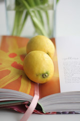 Colour of today (milk&sugar) Tags: yellow lemons applesforjam tessakiroscookbook