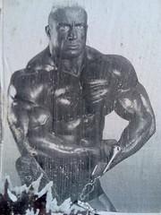 Strong Man (Michelle Foocault) Tags: wallpaper man berlin muscles bodybuilding