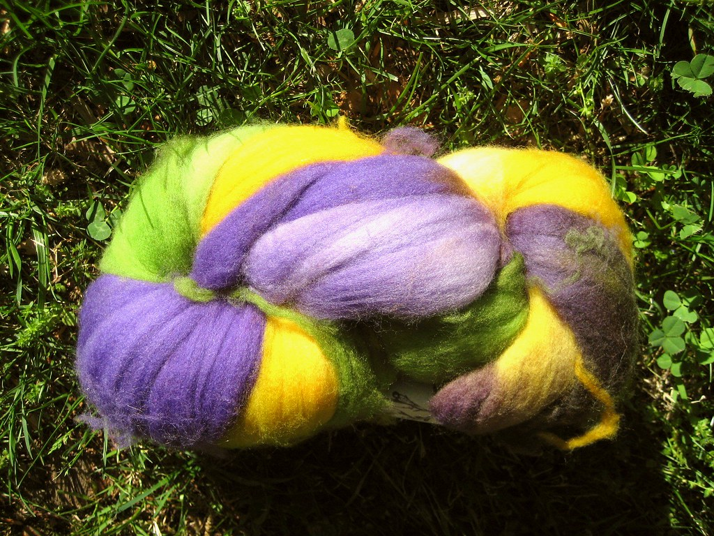 Aster Superwash Roving