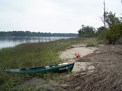 A Distant Shore (greenkayak73) Tags: dog beagle island boat kayak d weekend tide southcarolina saturday adventure cotton kayaking oysters marsh paddling egret bluffton mayriver greenkayak73 broadheadskink crisputjakedownforanapandtoldmetogetoutside ifinallygottogopaddlingforthefirsttimein6months itfeltstrangetobeoutwithoutjake whenicamehomehehadasmilewaitingjustforme