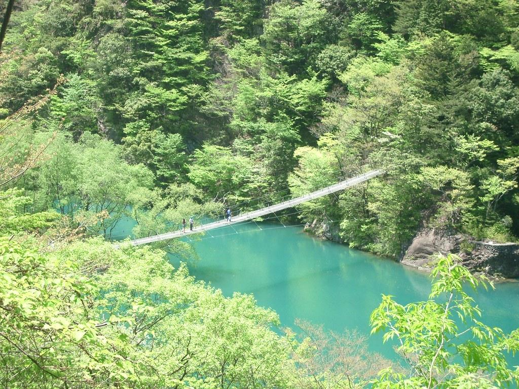Bridge over Ooigawa 3