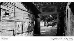 (Royal Shi) Tags: bw 120 film documentary fuzhou 612  delta400