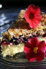 Wild Berry Tart (Elina Innanen) Tags: flowers flower pie dessert baking vegan strawberry sweet oatmeal blueberry vegetarian petunia tart blueberries