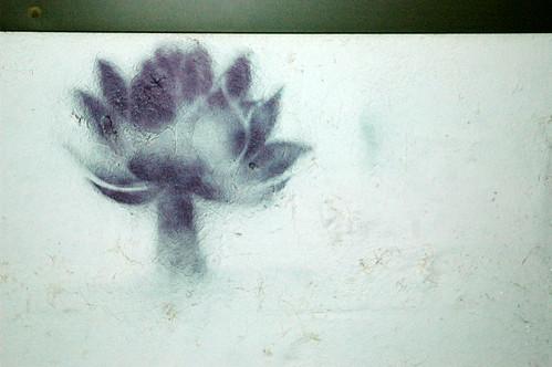 graffiti: lotus blossom silhouette