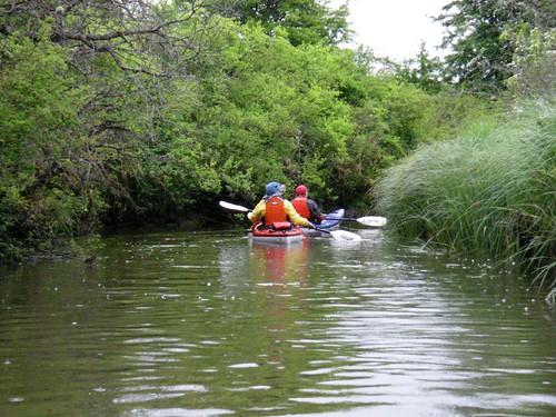 Colquitz Creek