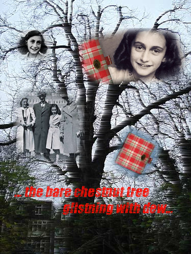 Diary of Anne Frank 7