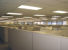 Cubicle farm.  Picture by st3ve.