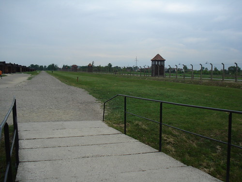 The View of The Camp