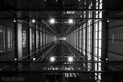 Looking up [explore] (Scott Shields Photo) Tags: blue cross shield building chicago elevator lobby going up ohc2016 open house lights verticallity