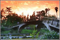 Puente Pedro de Valdivia (ifoto.cl) Tags: chile santiago atardecer metro navarro metropolitana tarde ignacio transporte thok medel thokrates