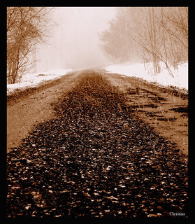 What Lies Ahead...